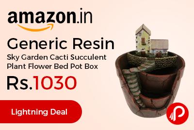 Generic Resin Sky Garden Cacti Succulent Plant Flower Bed Pot Box
